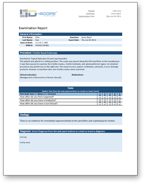 D-Scope Report Sample Template